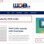 PHP cURL get request with parameters